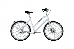 Bike Biomega Amsterdam Lady - Carbono