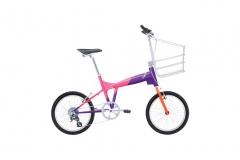 Bike Biomegapuma Pico - Carbono