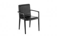 Cadeira Moderna - Drio