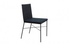 Cadeira 61 - Guilherme Wentz